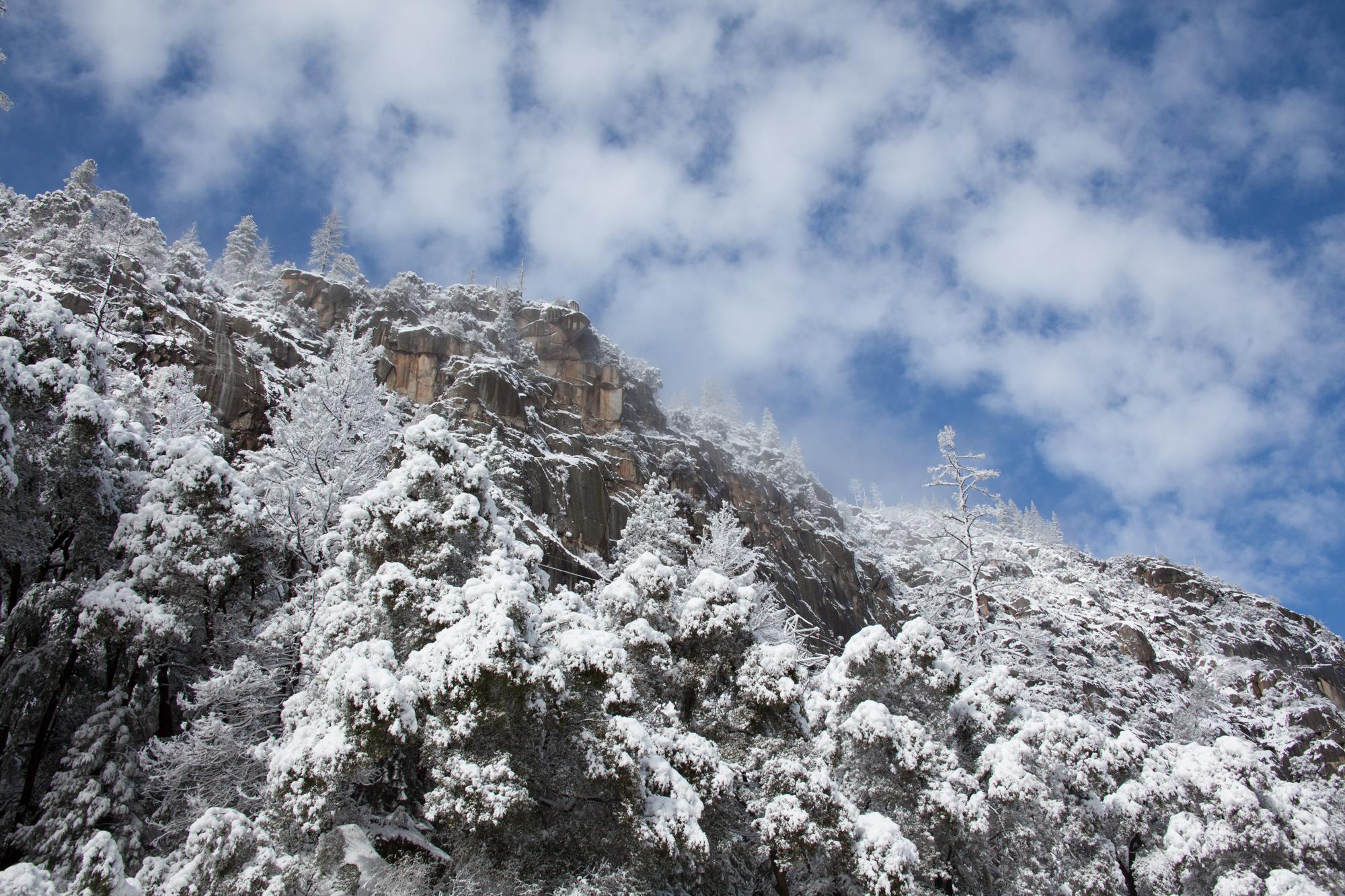 2019-02 Yosemite-28.jpg