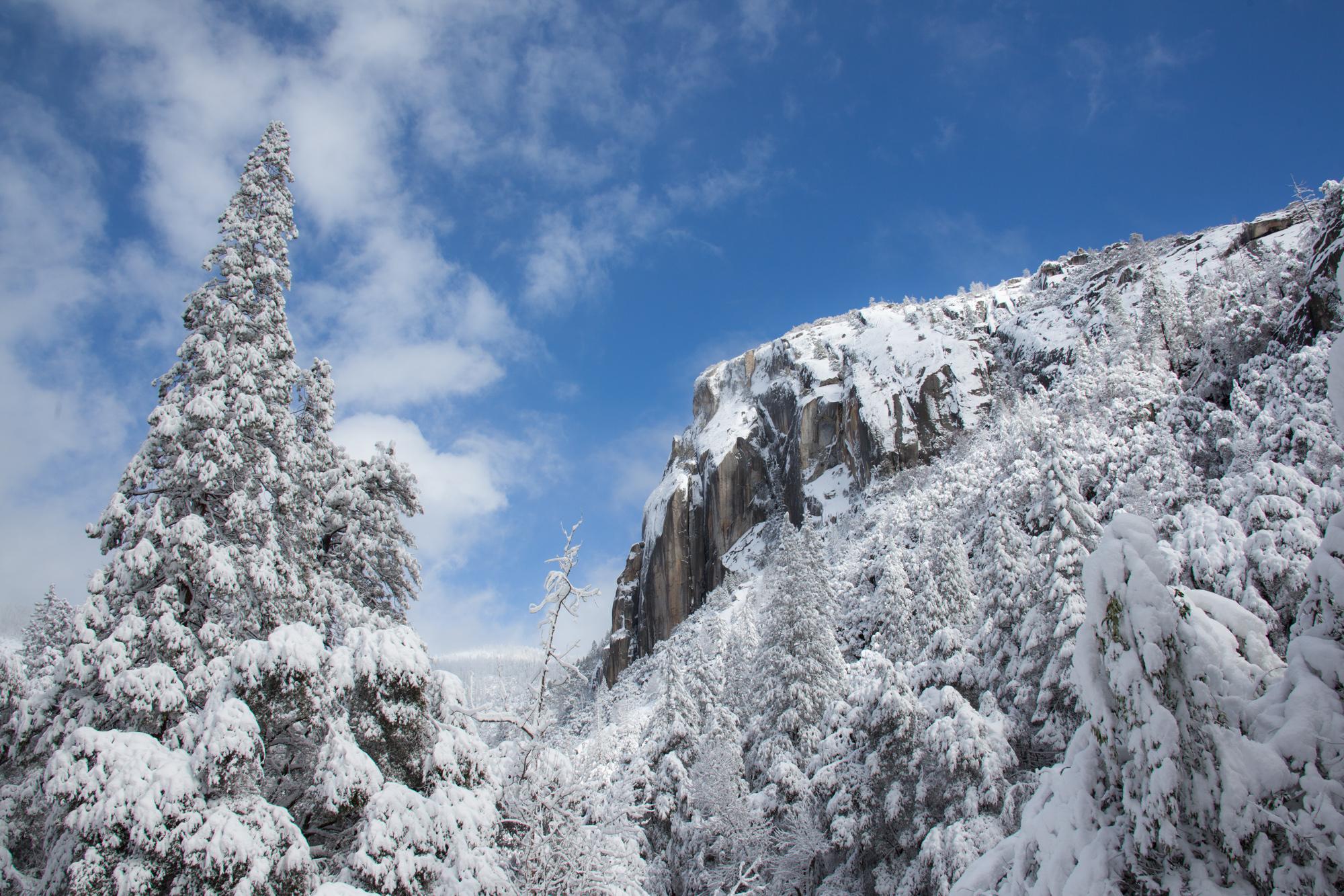 2019-02 Yosemite-30.jpg