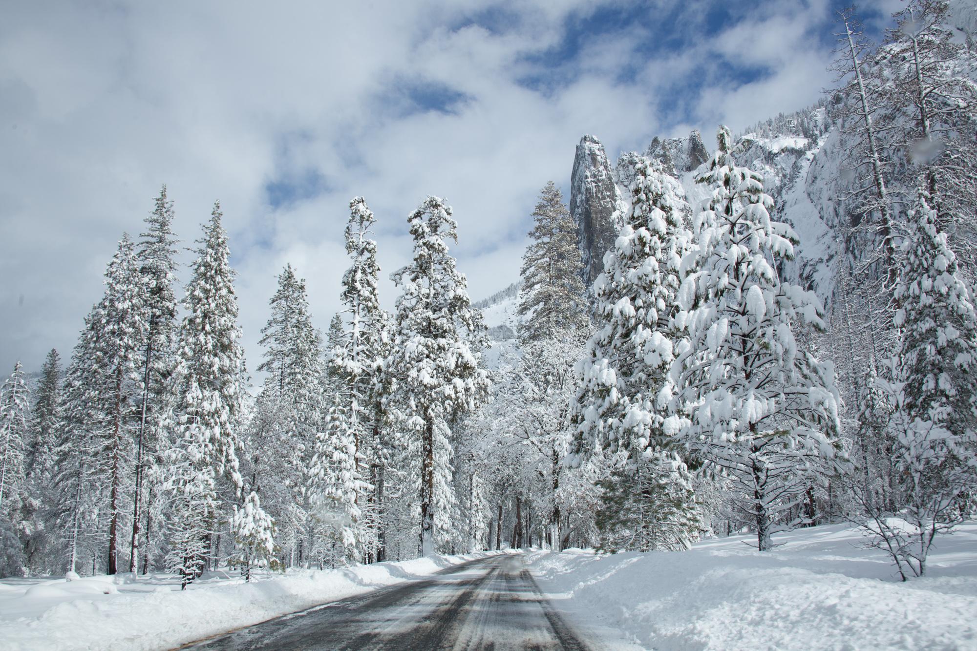 2019-02 Yosemite-34.jpg