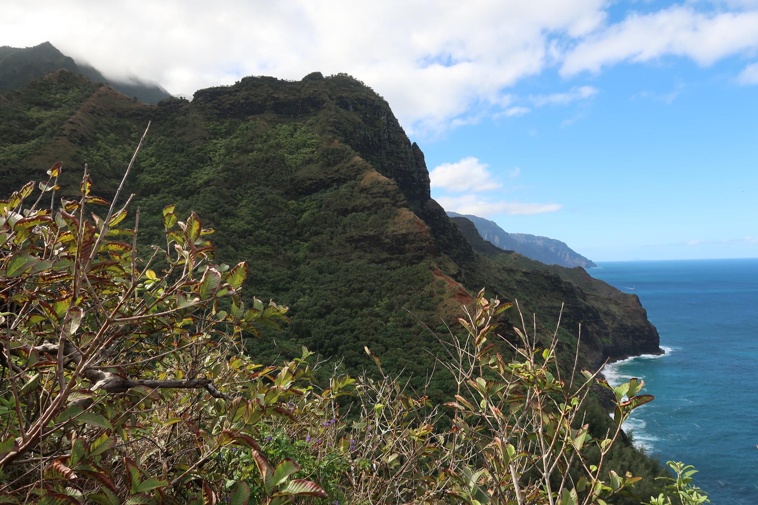 2017-12 J-Z Kauai - 26.jpg