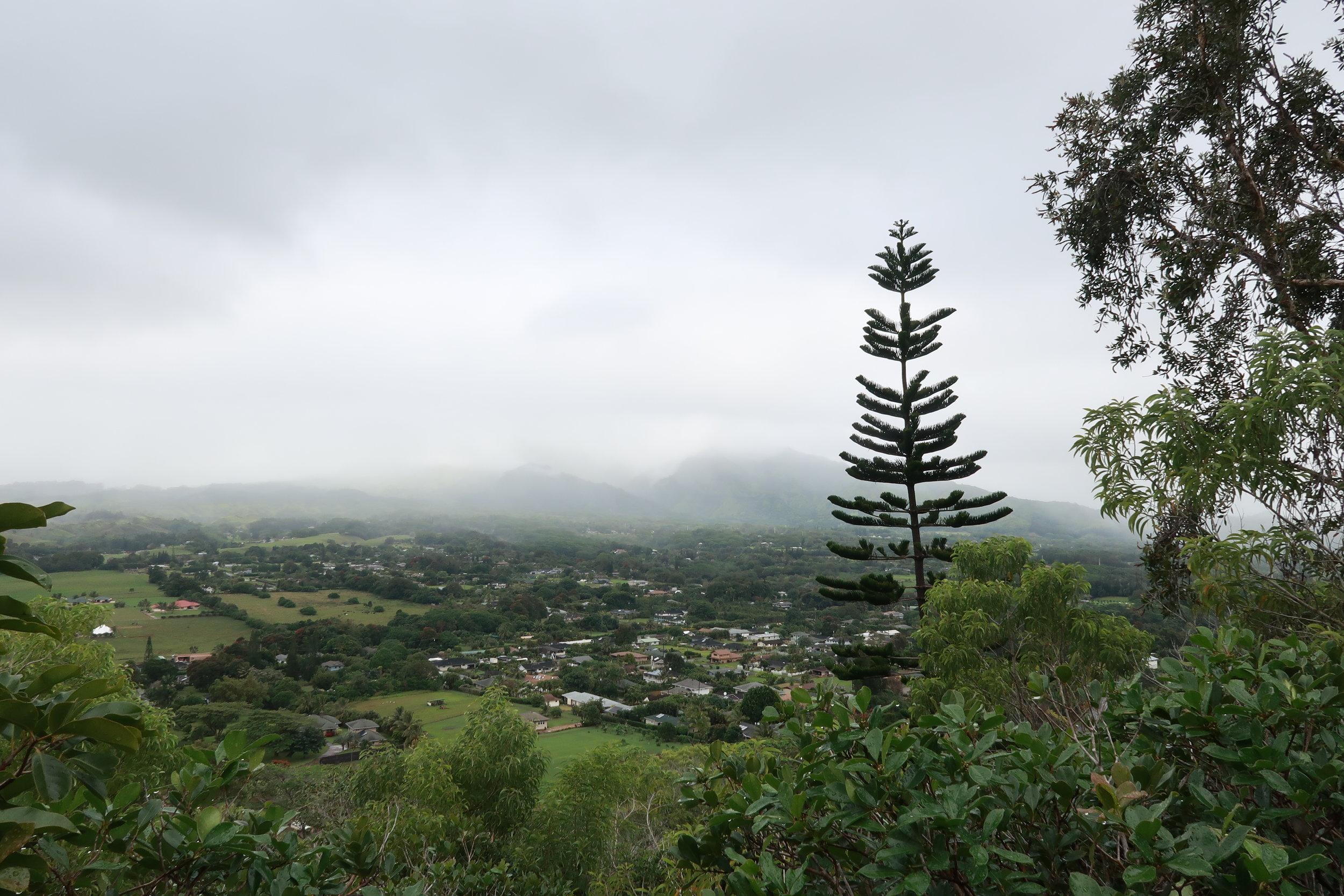 2017-12 J-Z Kauai - 116.jpg