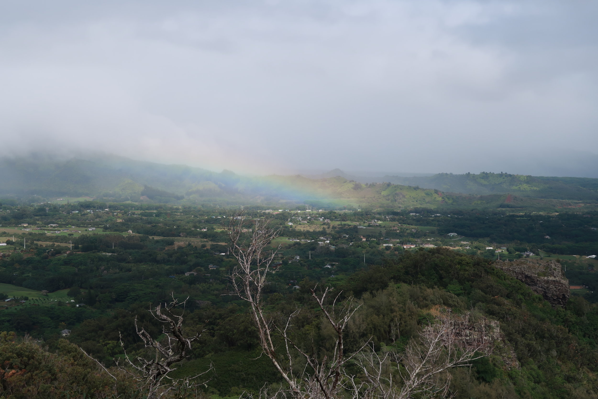 2017-12 J-Z Kauai - 118.jpg