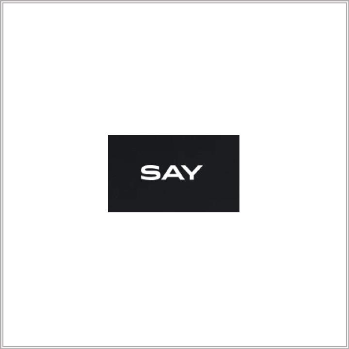 Say.com logo.jpg