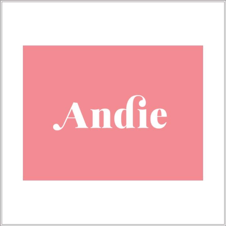 Andie Logo.jpg