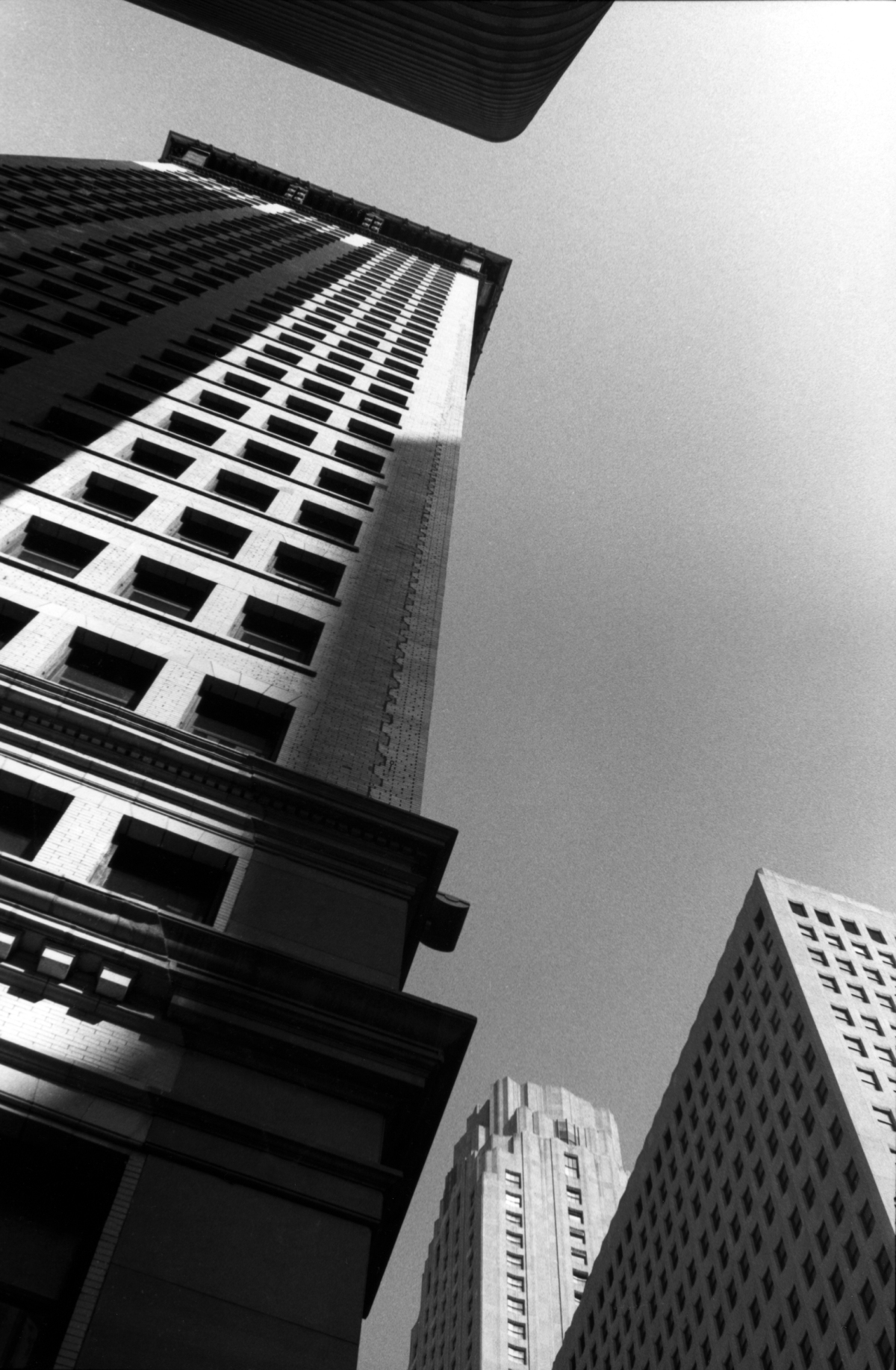 vertical city_1.jpg