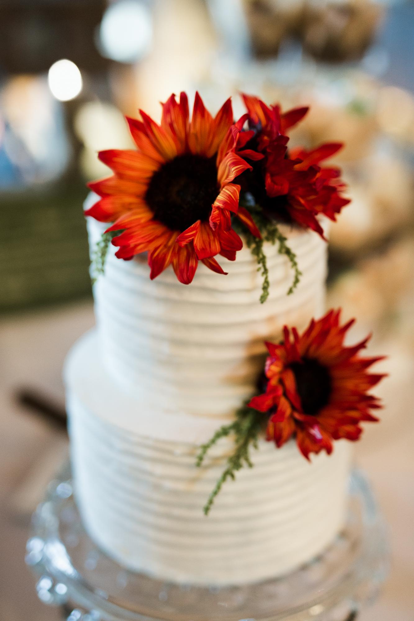 Ireland Wedding-343.JPG