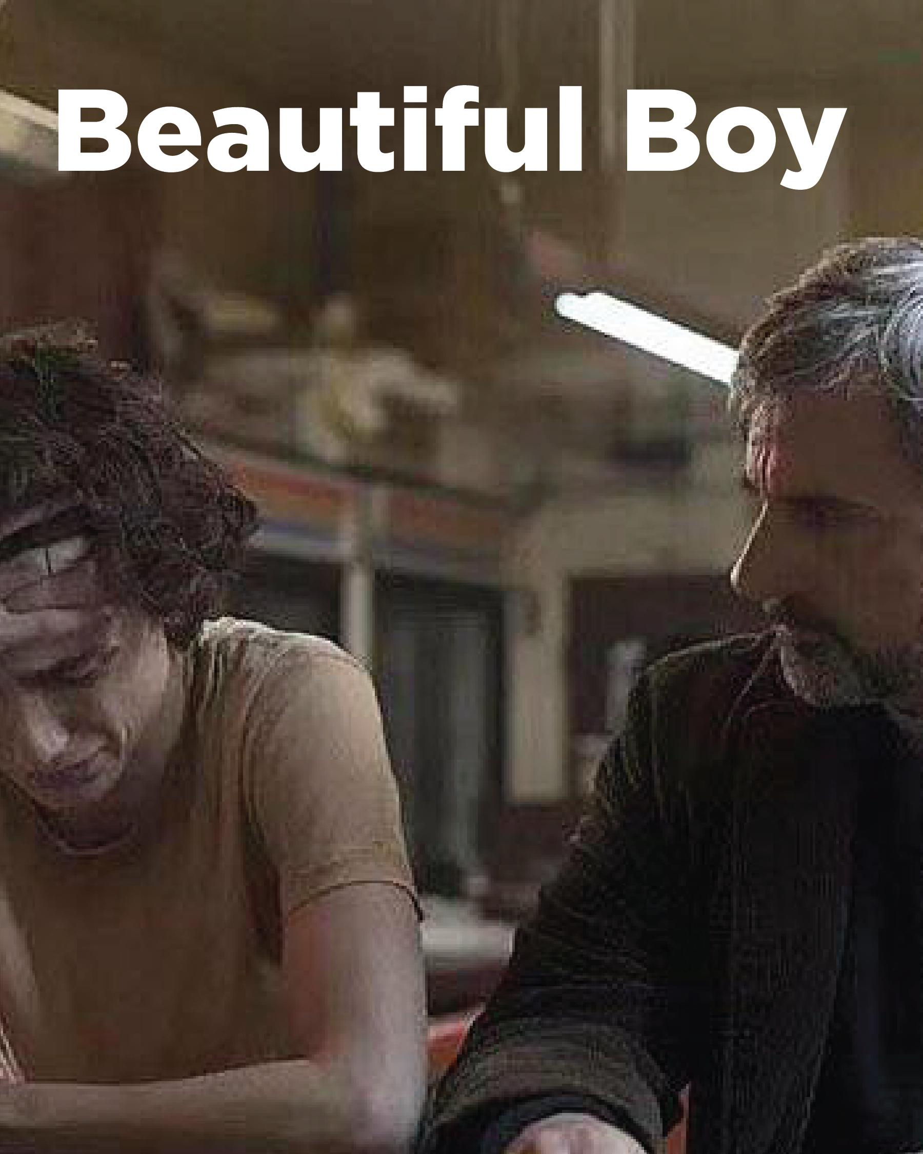 Directed by Felix Van Groeningen, Starring Steve Carell, Timothée Chalamet, Maura Tierney, Amy Ryan