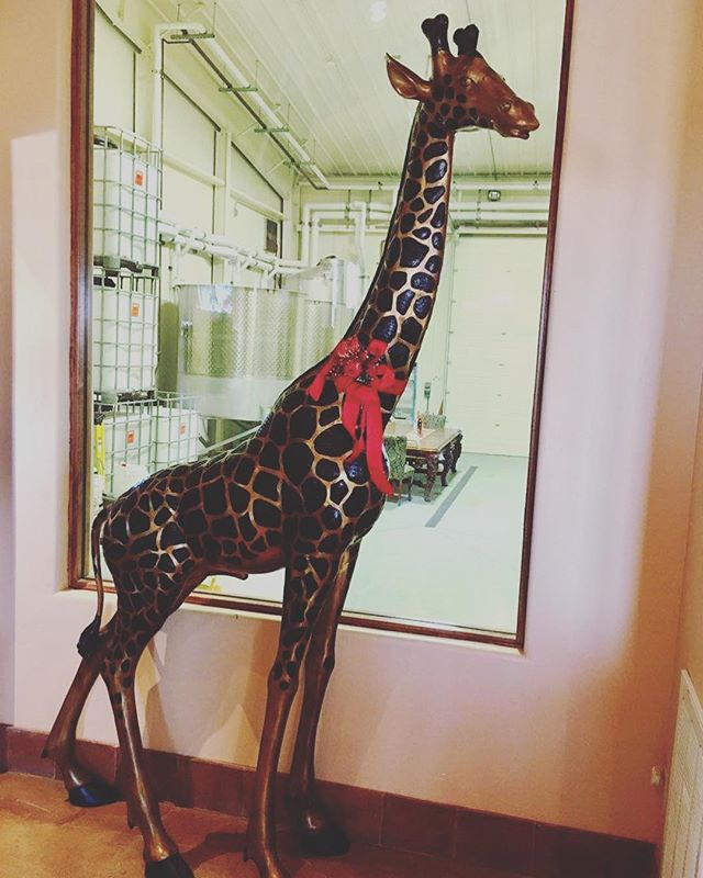 We're dressing up our famous 🦒🦒 and our tasting room for Holiday on the Trail this weekend!! Don't miss out on sparkling wine specials, complimentary food and wine pairing, and a complimentary taste of our 91-point Cab!! 'Tis the season for sweet treats and special discounts....CHEERS!!! 🍷🥂🍾@pleasantvalleywinetrail