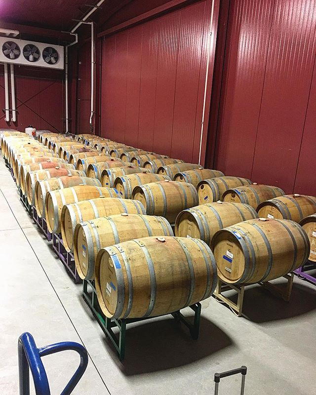 We're about to taste through our barrels!!! Can't complain about this job....and we're super excited to come up with our next blends!!🍷🥂🍷🥂