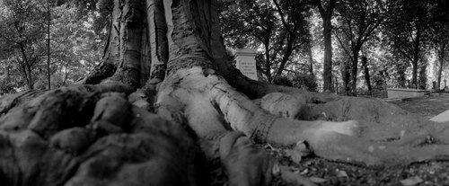 cemetery04.jpg