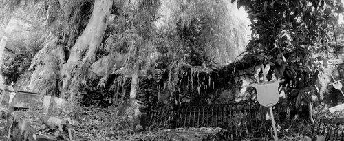 cemetery13.jpg