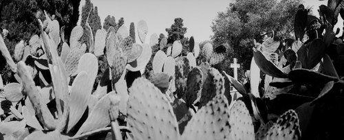 cemetery18.jpg