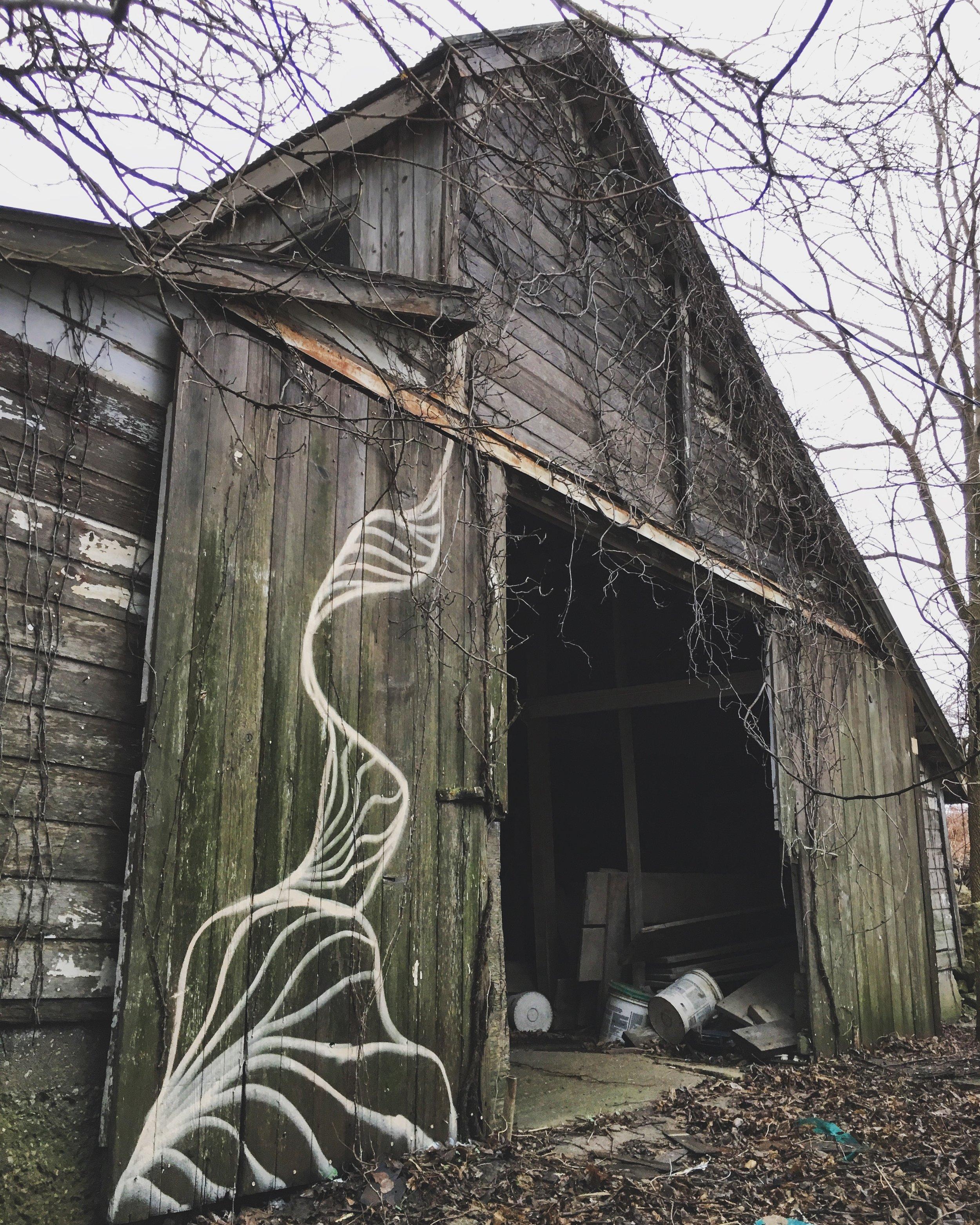 Strider Patton - Barn mural - Iowa 2017