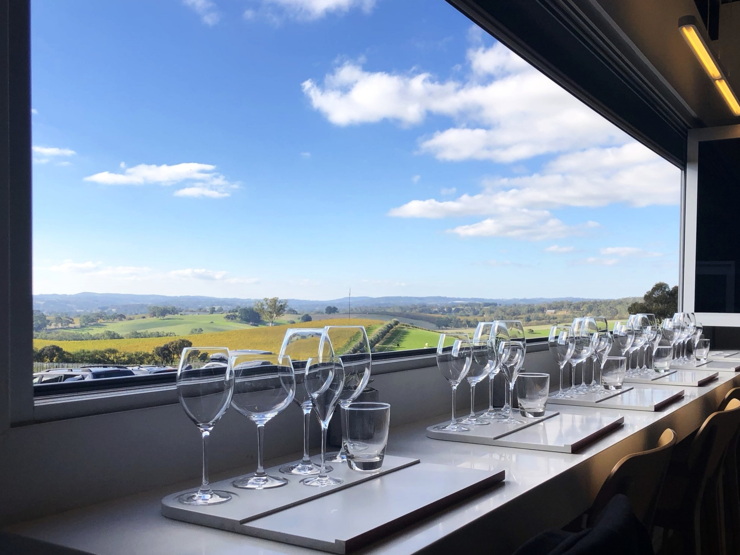 STUNNING view from The Lane Vineyard cellar door