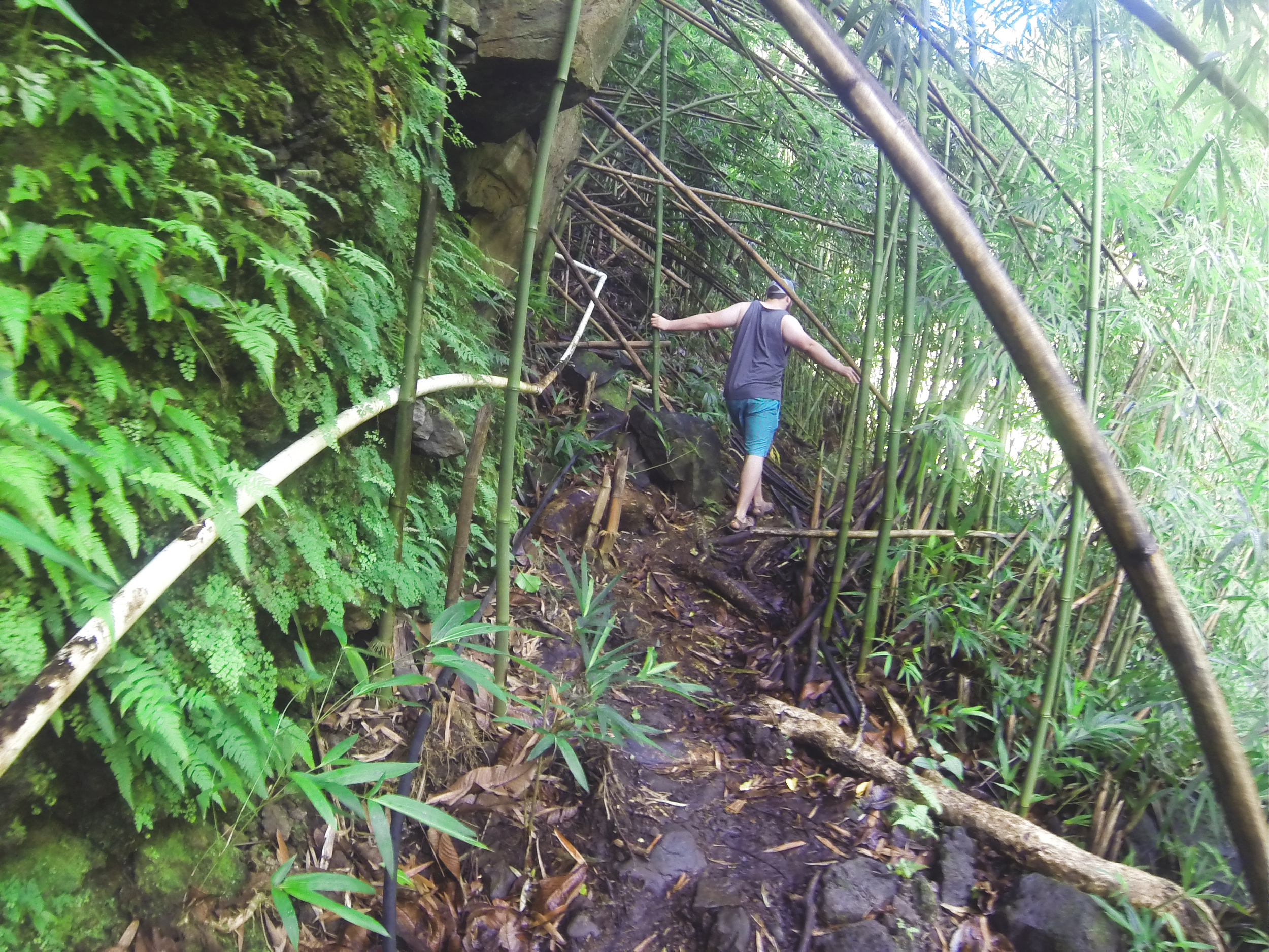 We found a swimming hole about 10 miles in and took the wrong path in. ty took a slip but was fortunately fine.