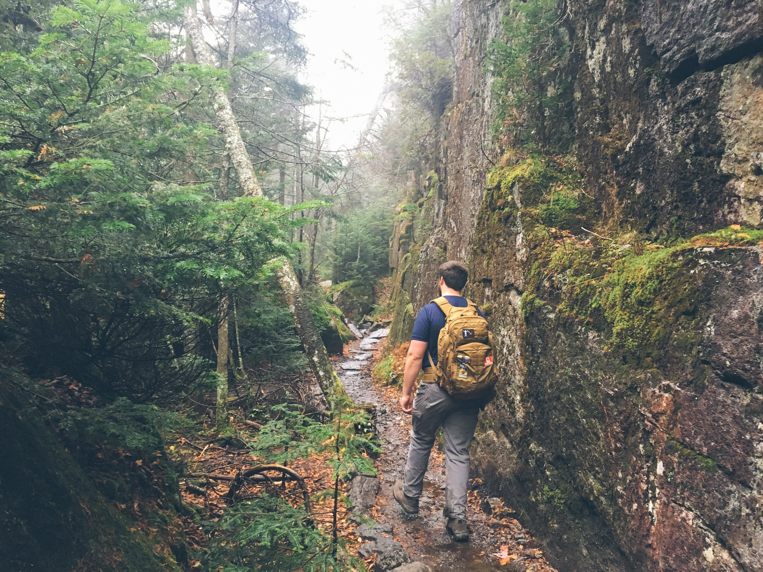 mt. colden trail the adirondacks high peaks | mountain things