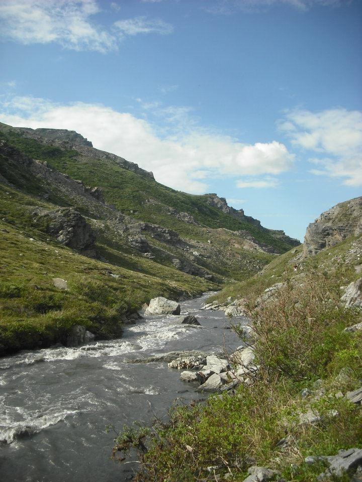 Savage River Loop Trail in Denali   Mountain Things