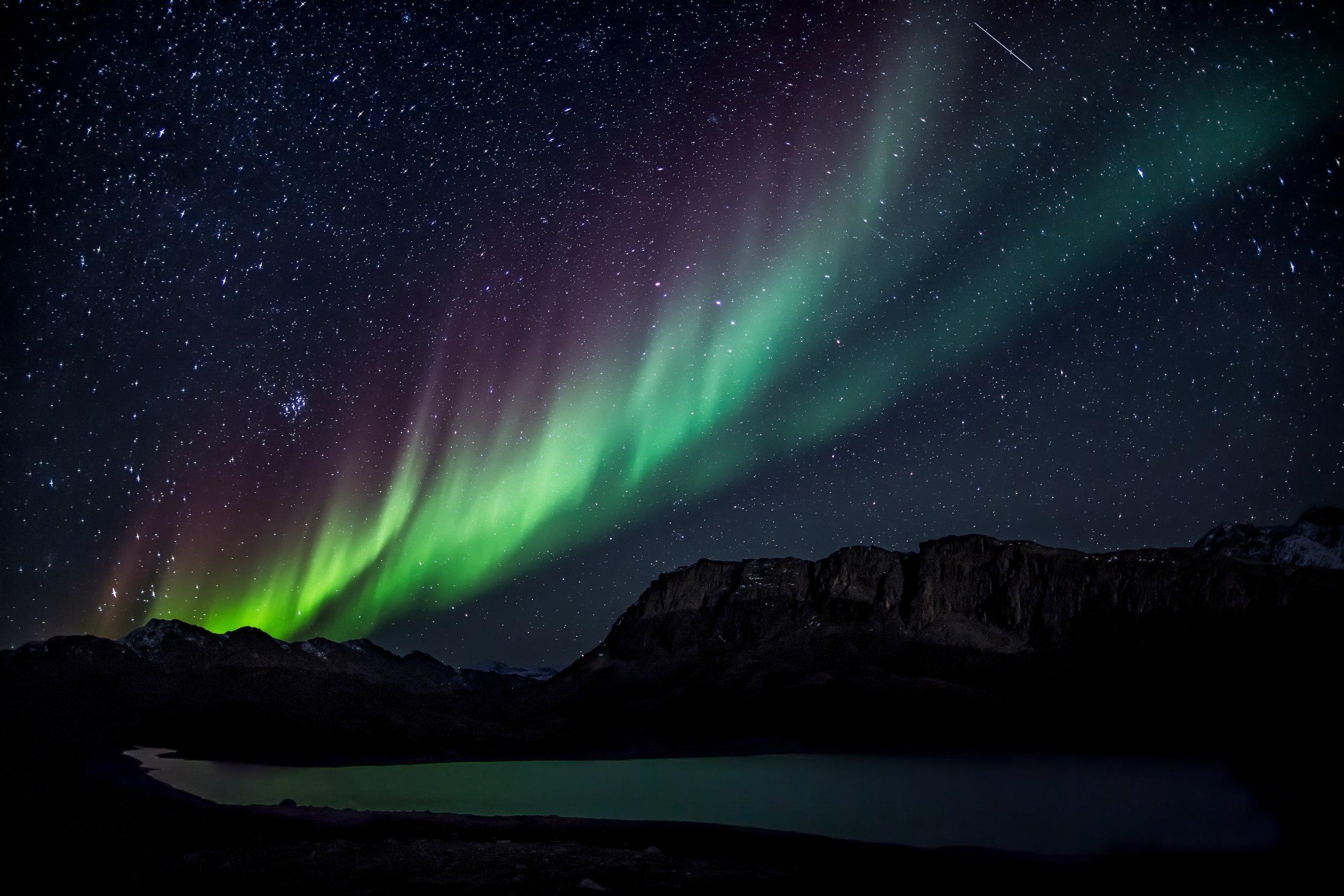 northern lights in denali national park