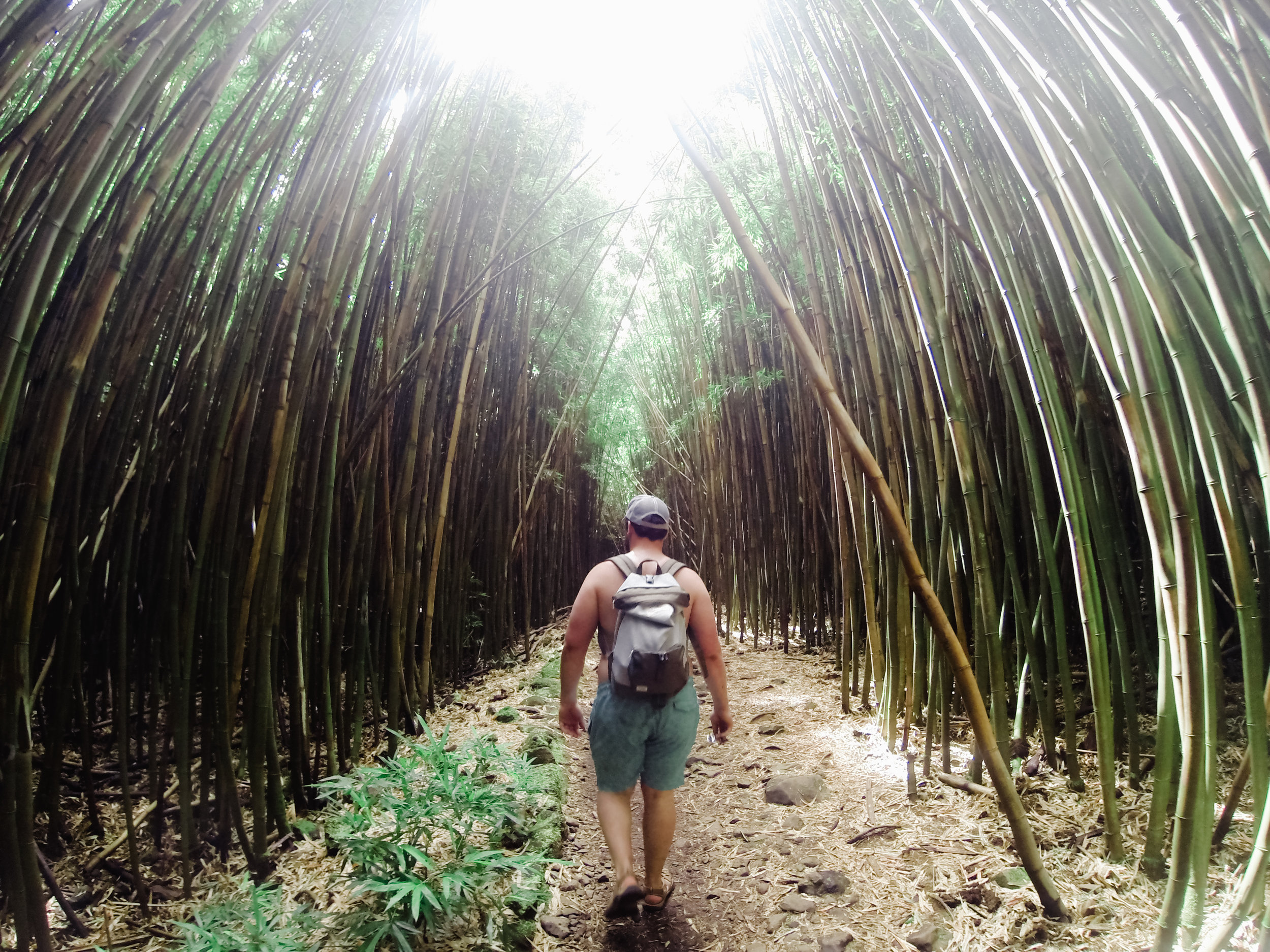 Day 1: The Road to Hana & Haleakala National Park - Swimming holes, bamboo forests, and waterfalls