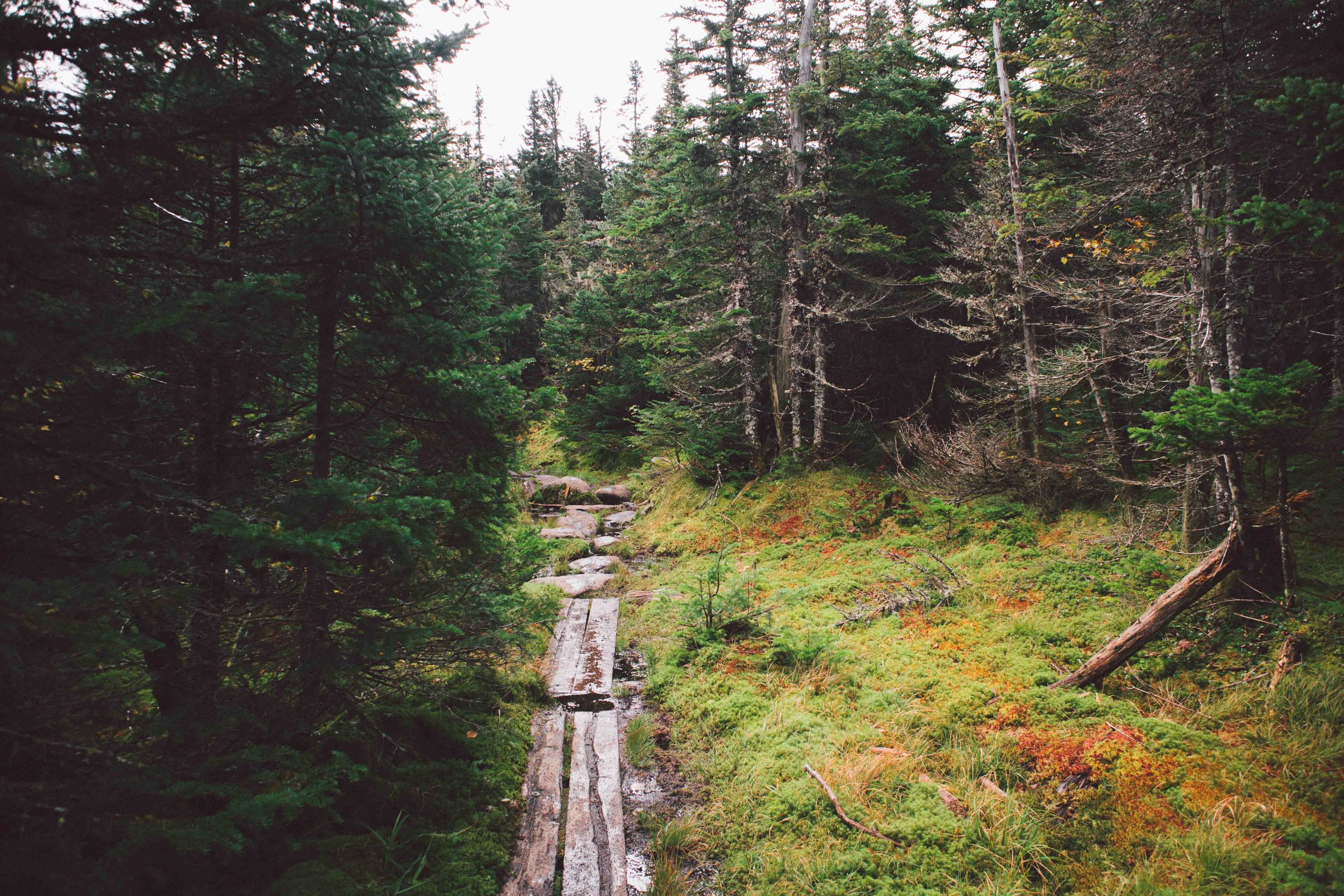 Adirondacks-2018-web-2-12-Mount-Marcy.jpg