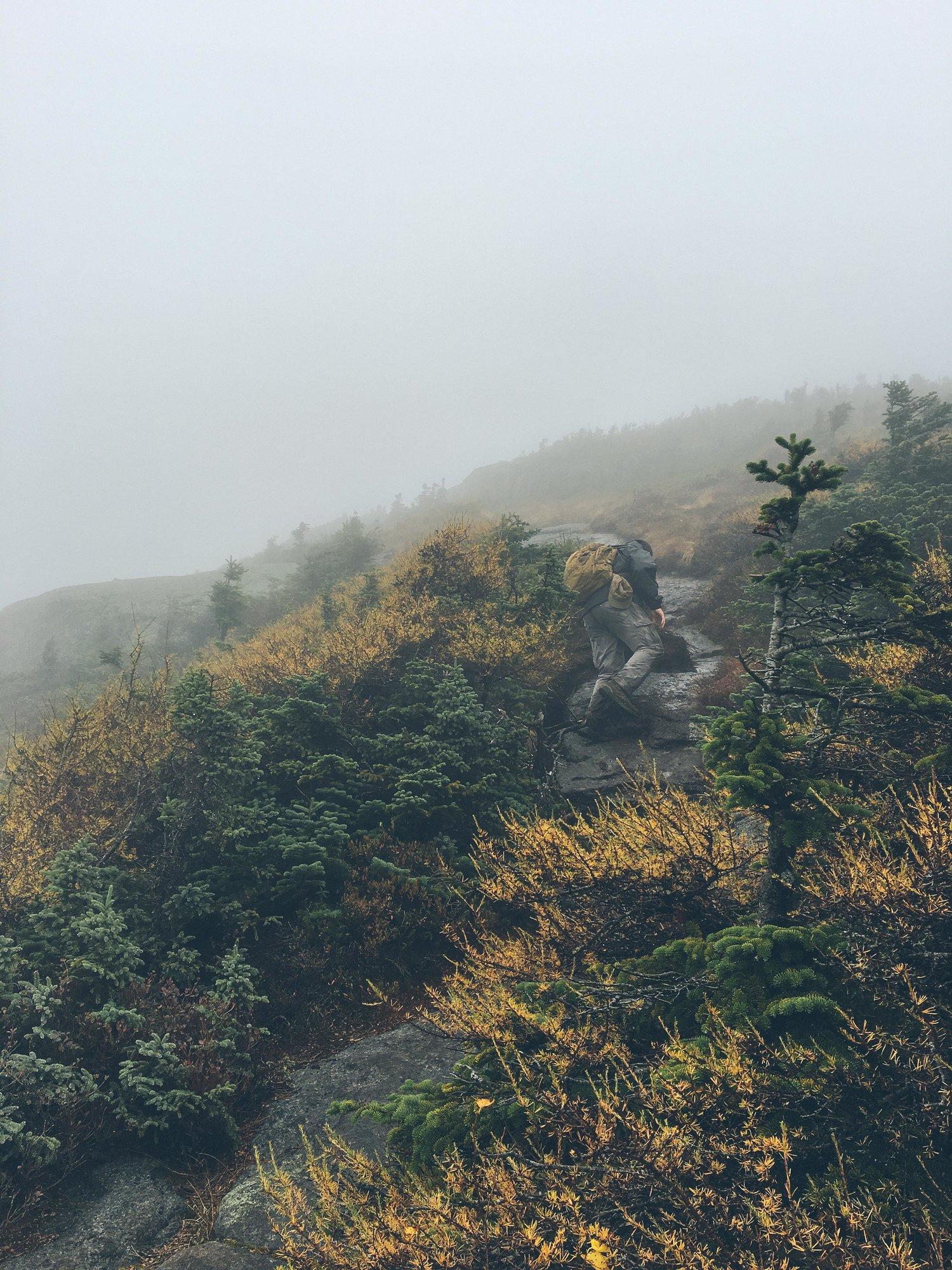 adirondacks-mt-colden-mountain-things+(70+of+83).jpg