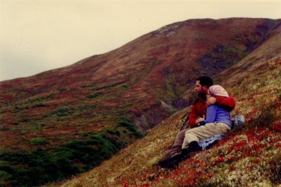 Resting in the muskeg and low cranberry  patches on the Dixie Pass in Wrangle St. Elias, Alaska