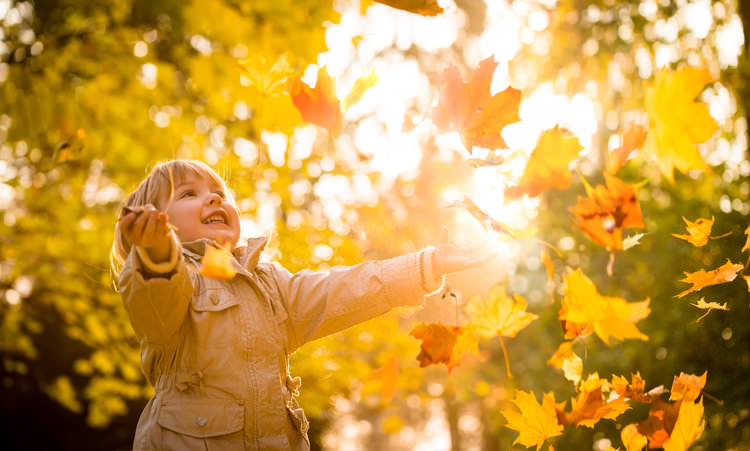 Child enjoying autumn time.jpg