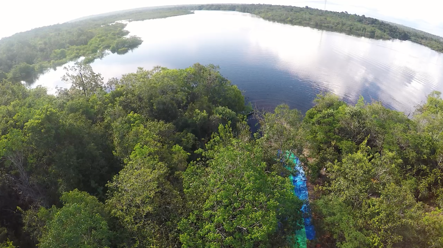 Part of the surrounding tributary, as captured by drone