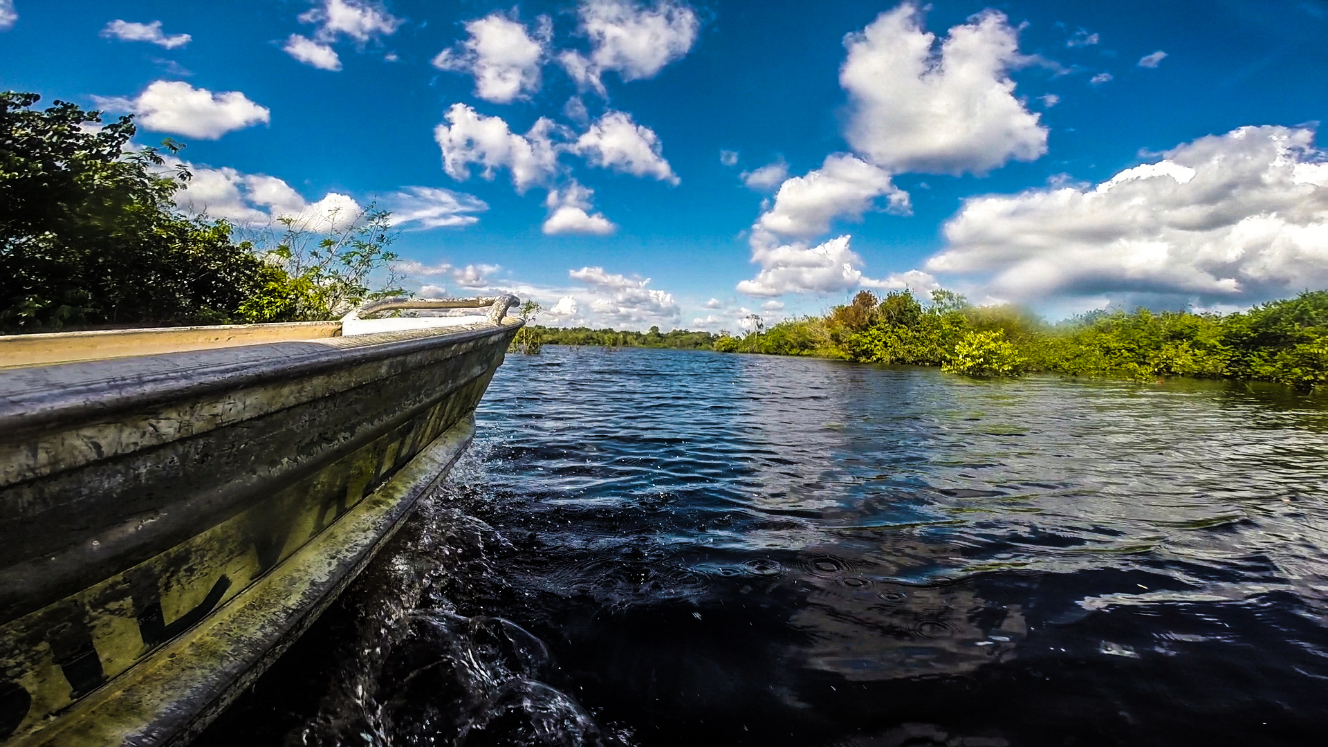 I film from the side of a swift boat on the Amazon tributary that surrounds the camp