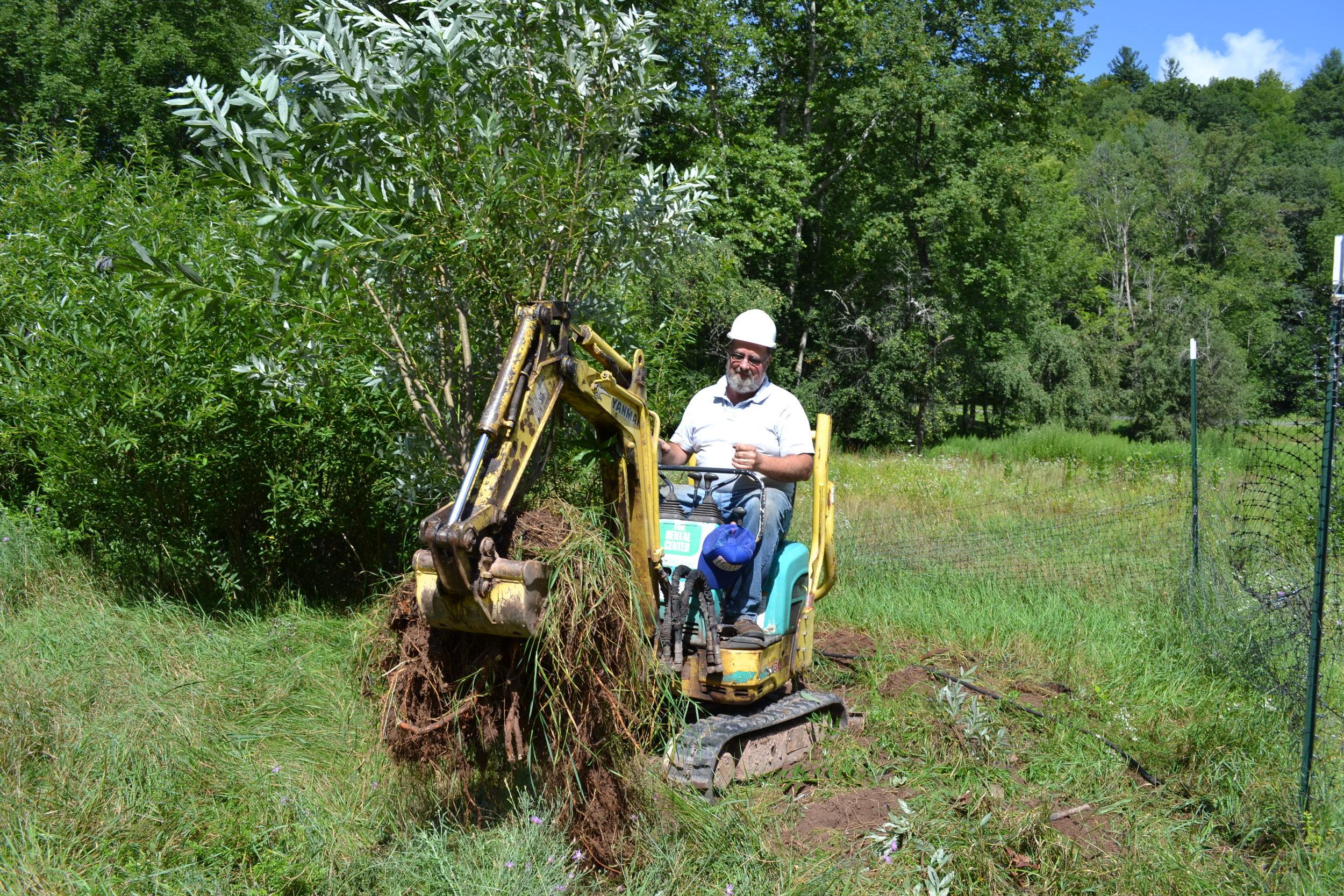 Willow Clump Harvest at ball fields along Rondout Creek (CSBI)
