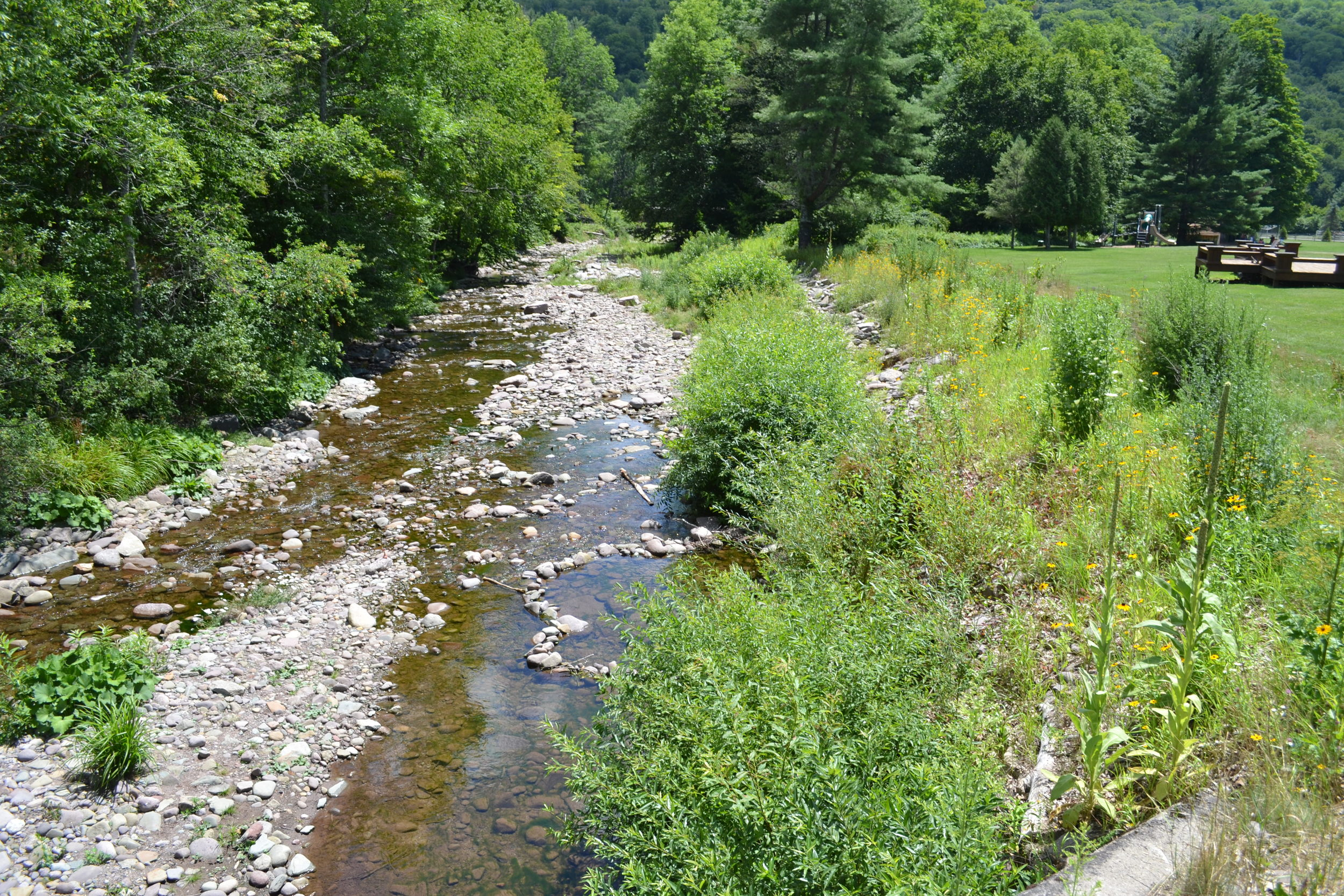 Erosion Repair &Buffer Planting, Biscuit Creek at Frost Valley YMCA
