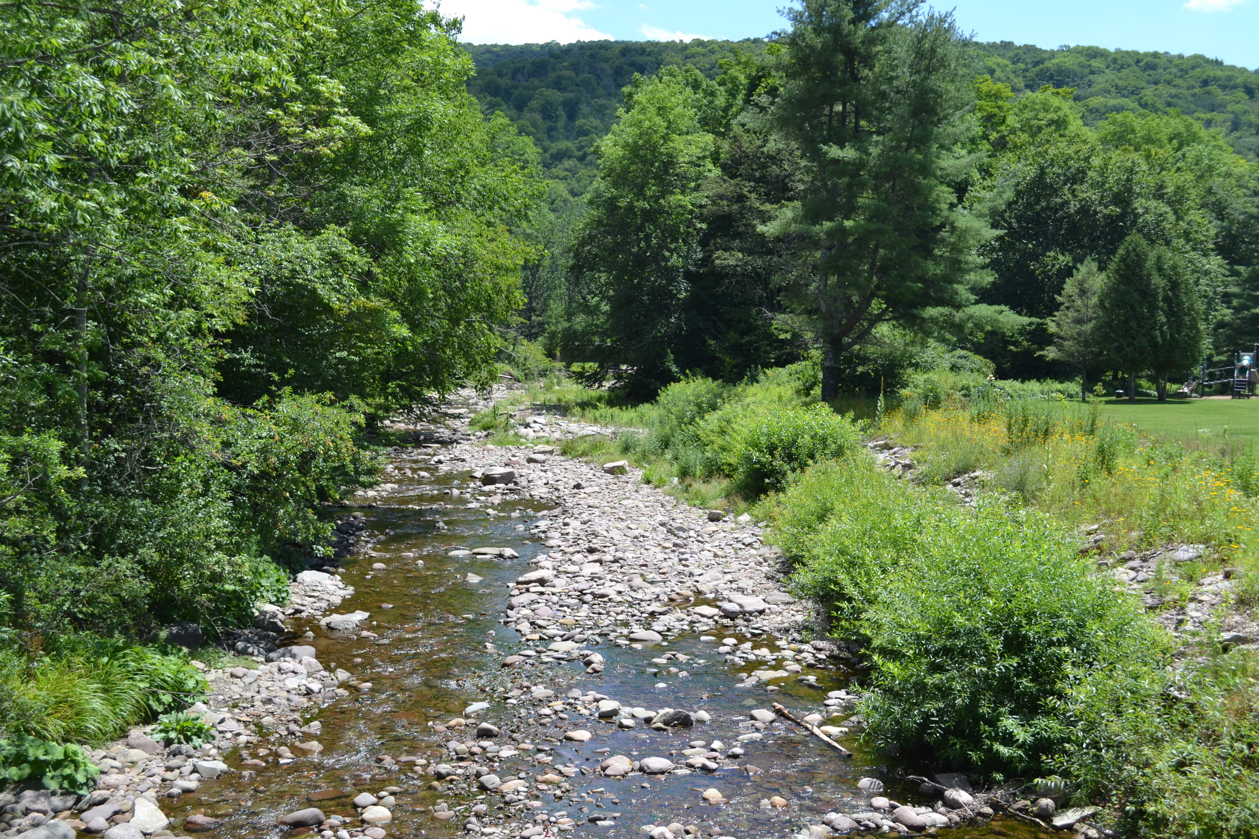 Stream Bank Toe Protection with Willow Fascines, Biscuit Creek at Frost Valley YMCA