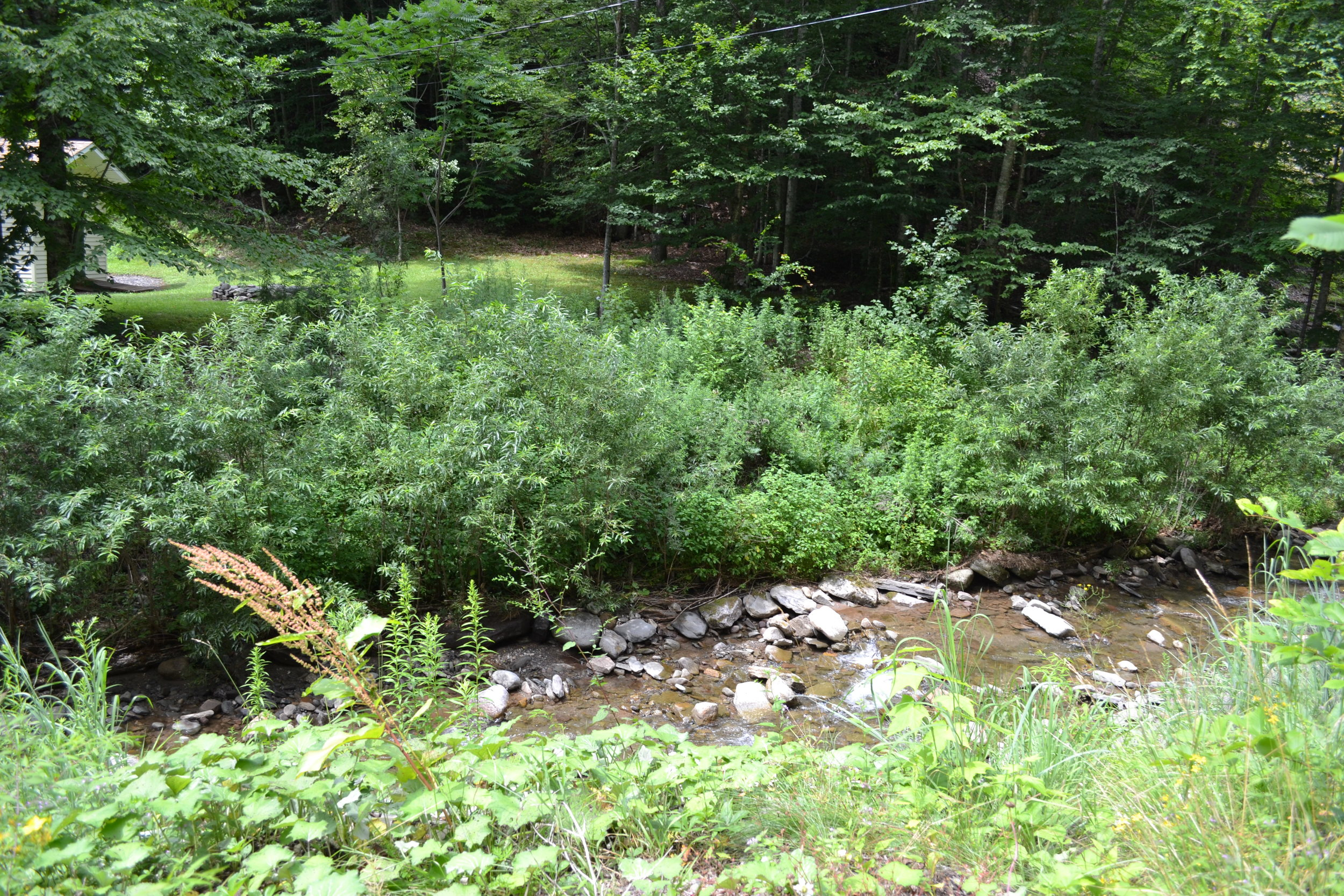 Stream Bank Stabilization, Tributary to Sundown Creek