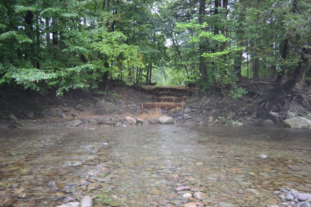 Avulsion Protection East Bank Neversink River, Claryville
