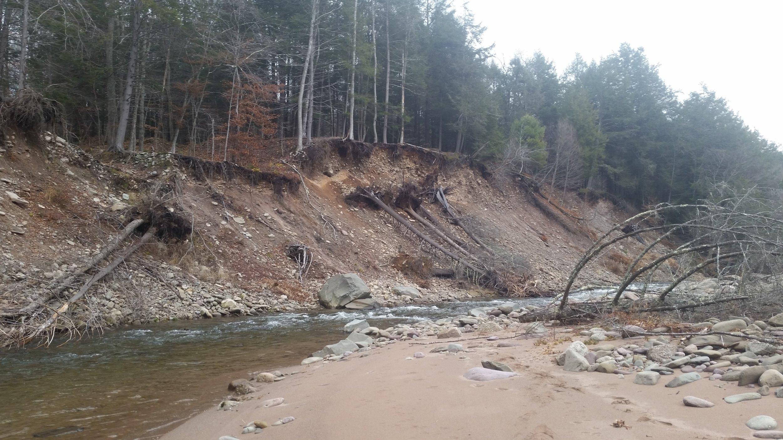 E. Branch Neversink River at Blue Hill Lodge Slope Stabilization Design