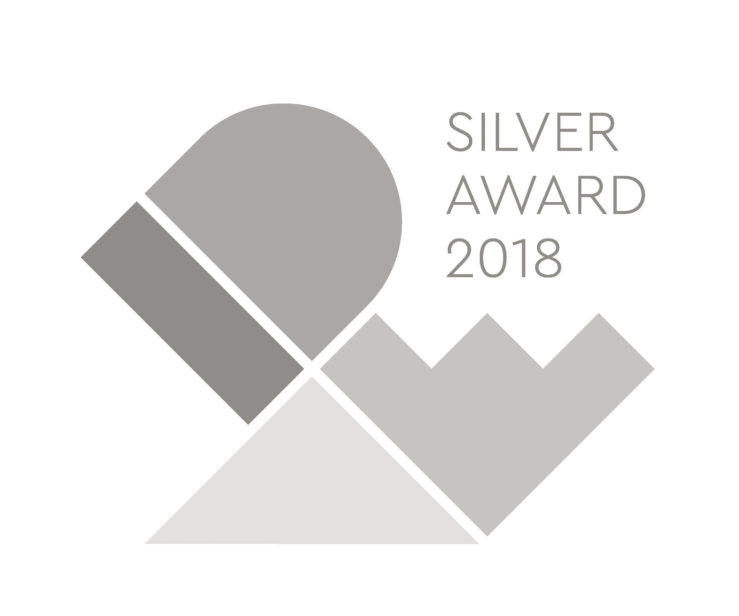 IDEA-2018-Silver.png