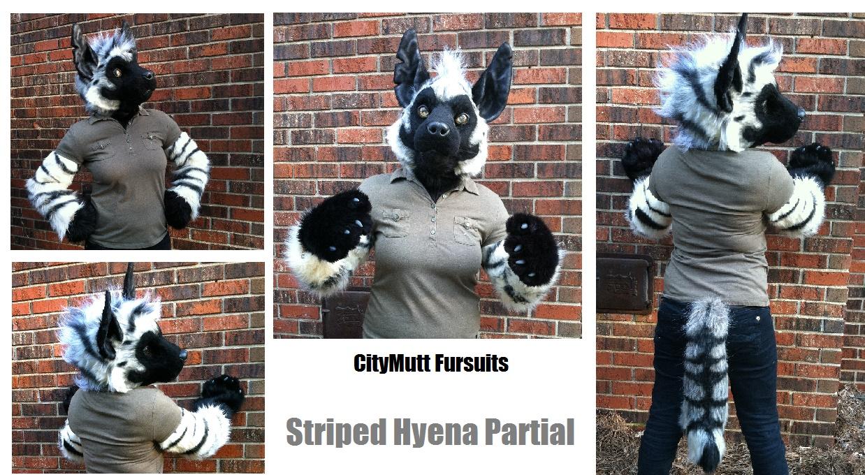 Striped Hyena Partial Gallery Sheet.jpg
