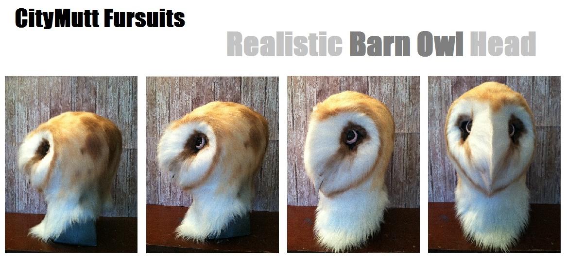 Barn Owl Gallery Sheet.jpg
