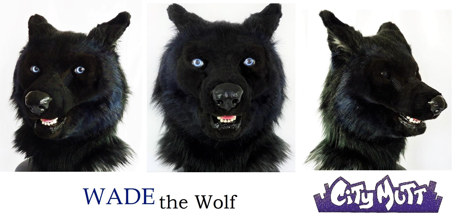 Wade Gallery Sheet.jpg