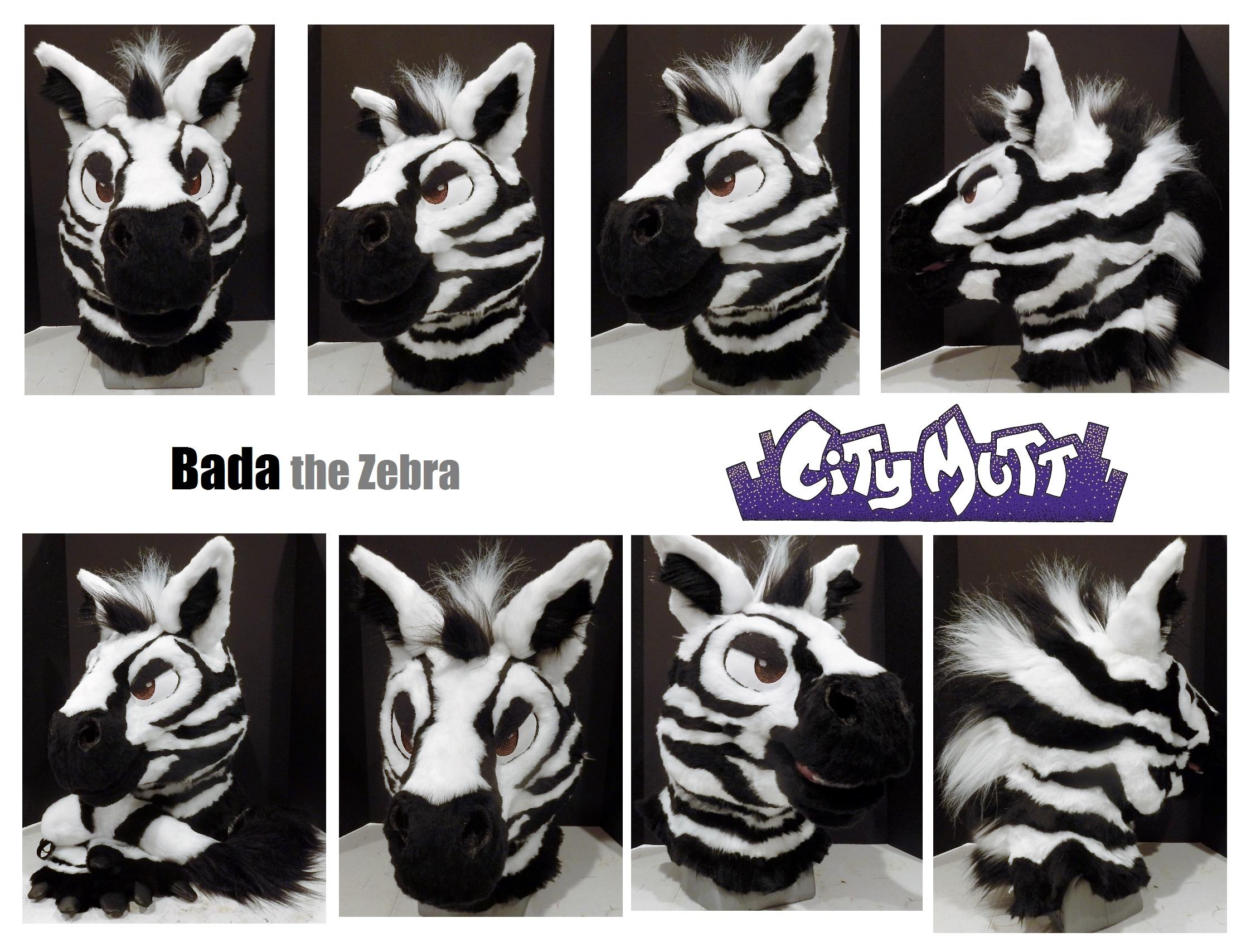 Bada Gallery Sheet.jpg
