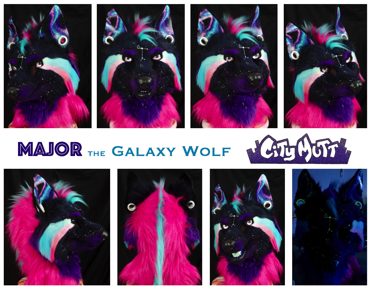 Major Gallery Sheet.jpg