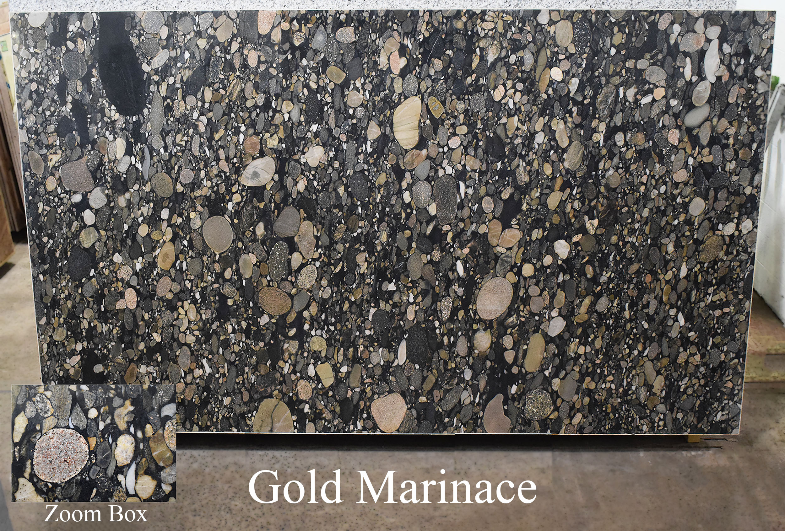 GOLD MARINACE