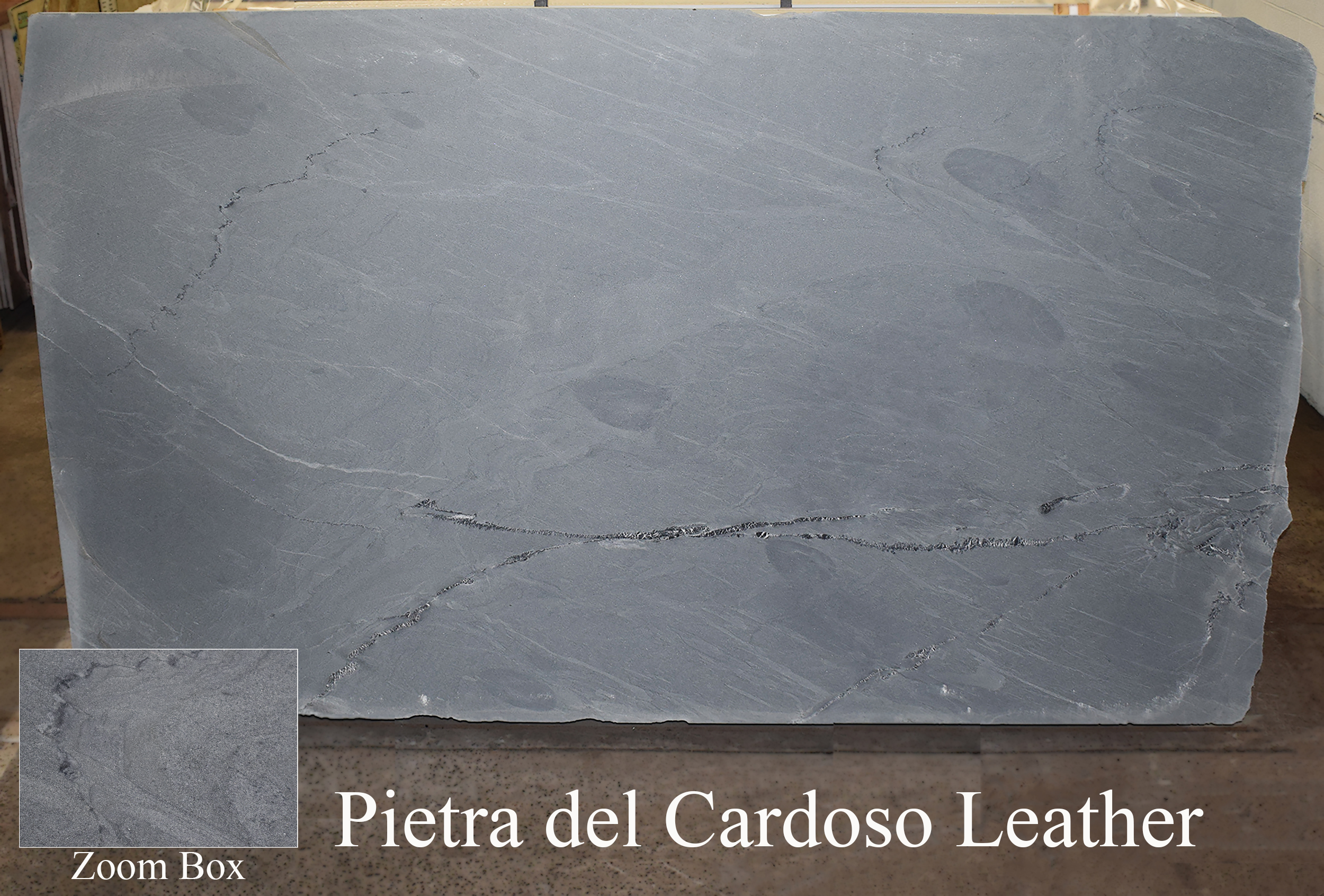 PIETRA DEL CARDOSO LEATHER