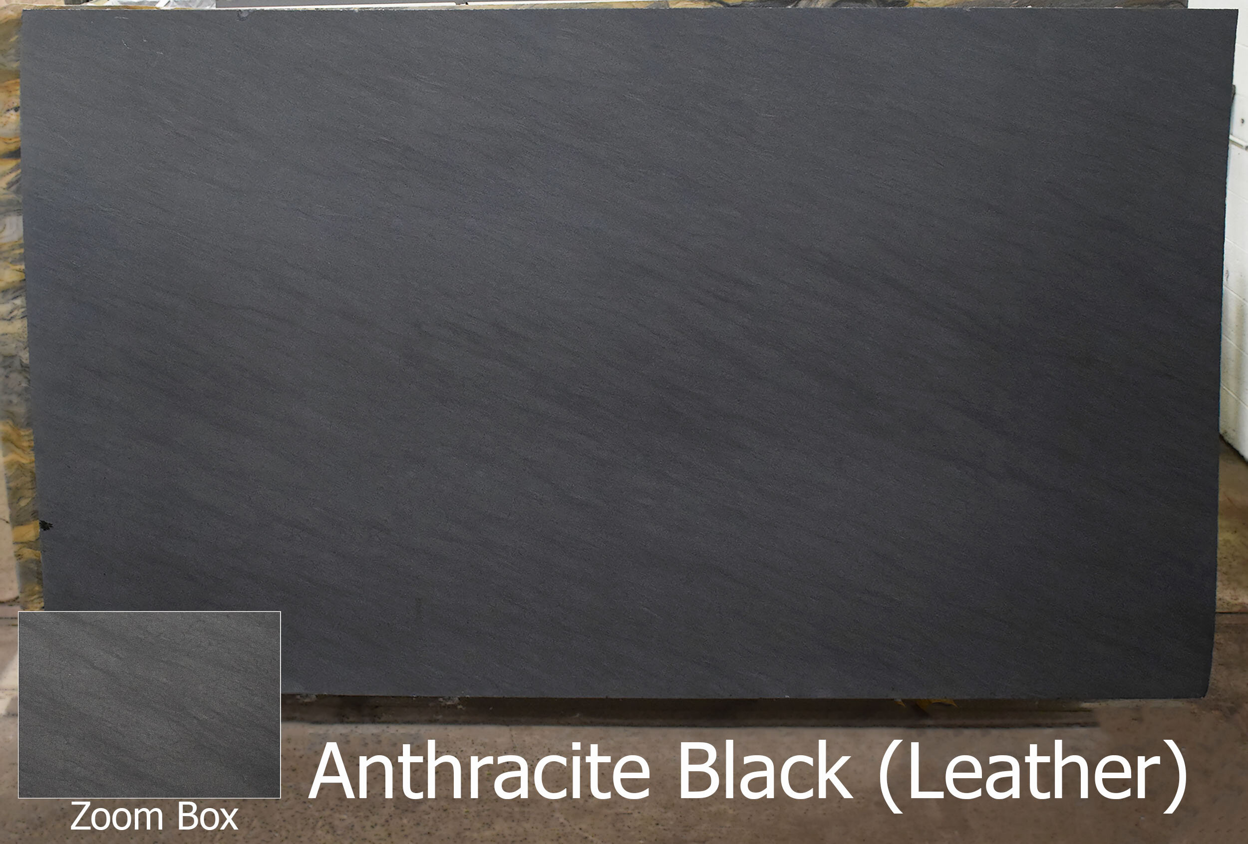 ANTHRACITE BLACK (LEATHER)