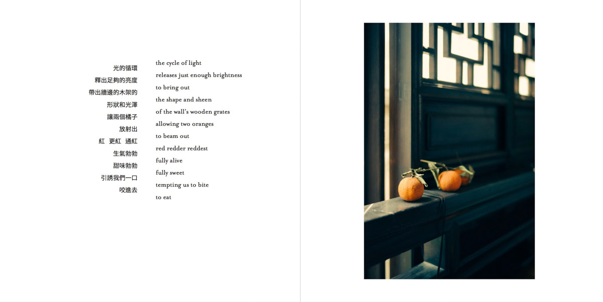 MemoriesMisplaced-Pages-026-1200.jpg