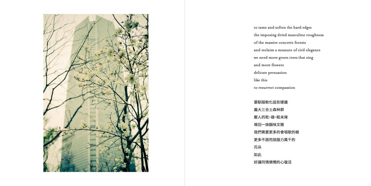 MemoriesMisplaced-Pages-031-1200.jpg