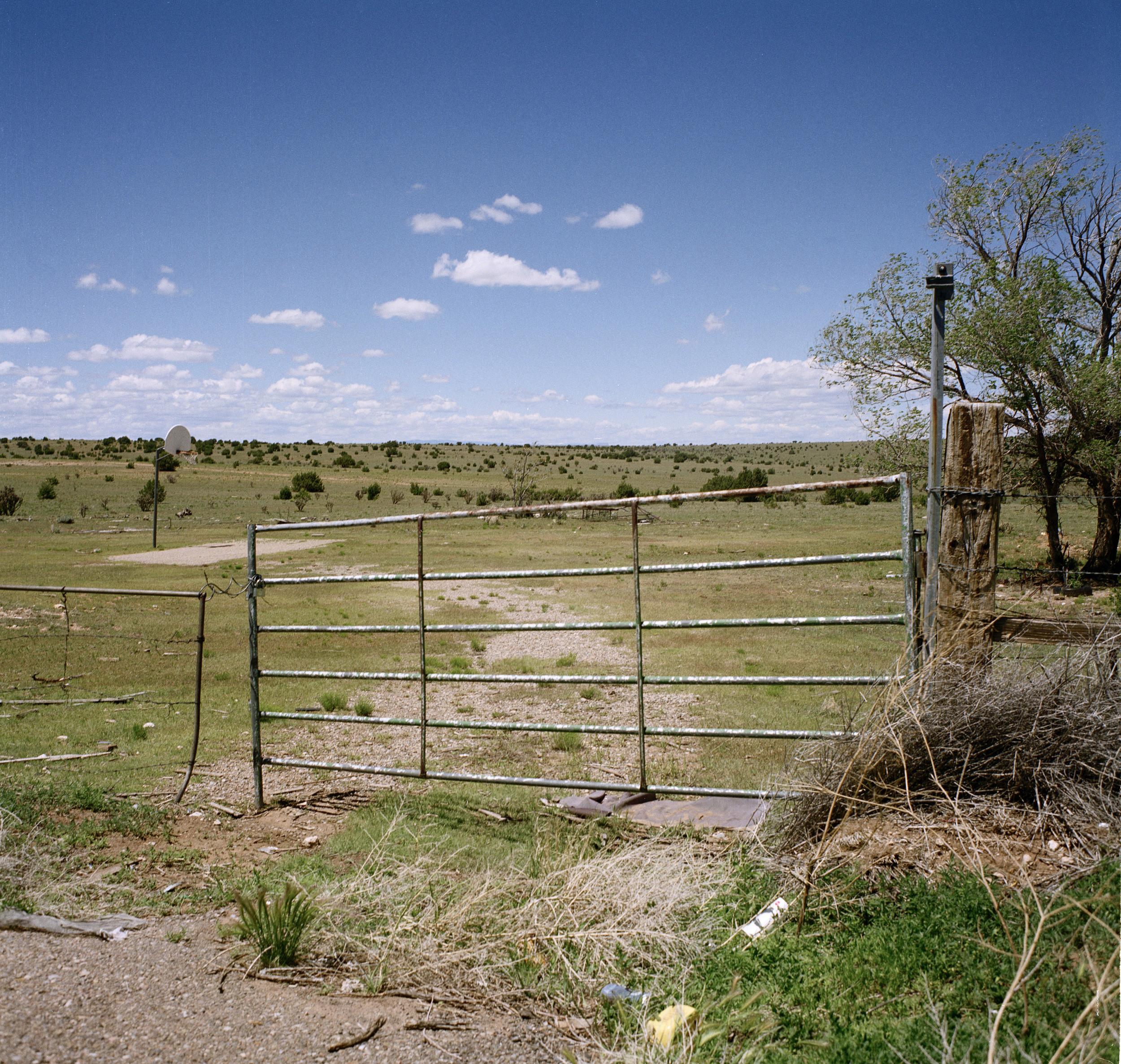 fence_far.jpg
