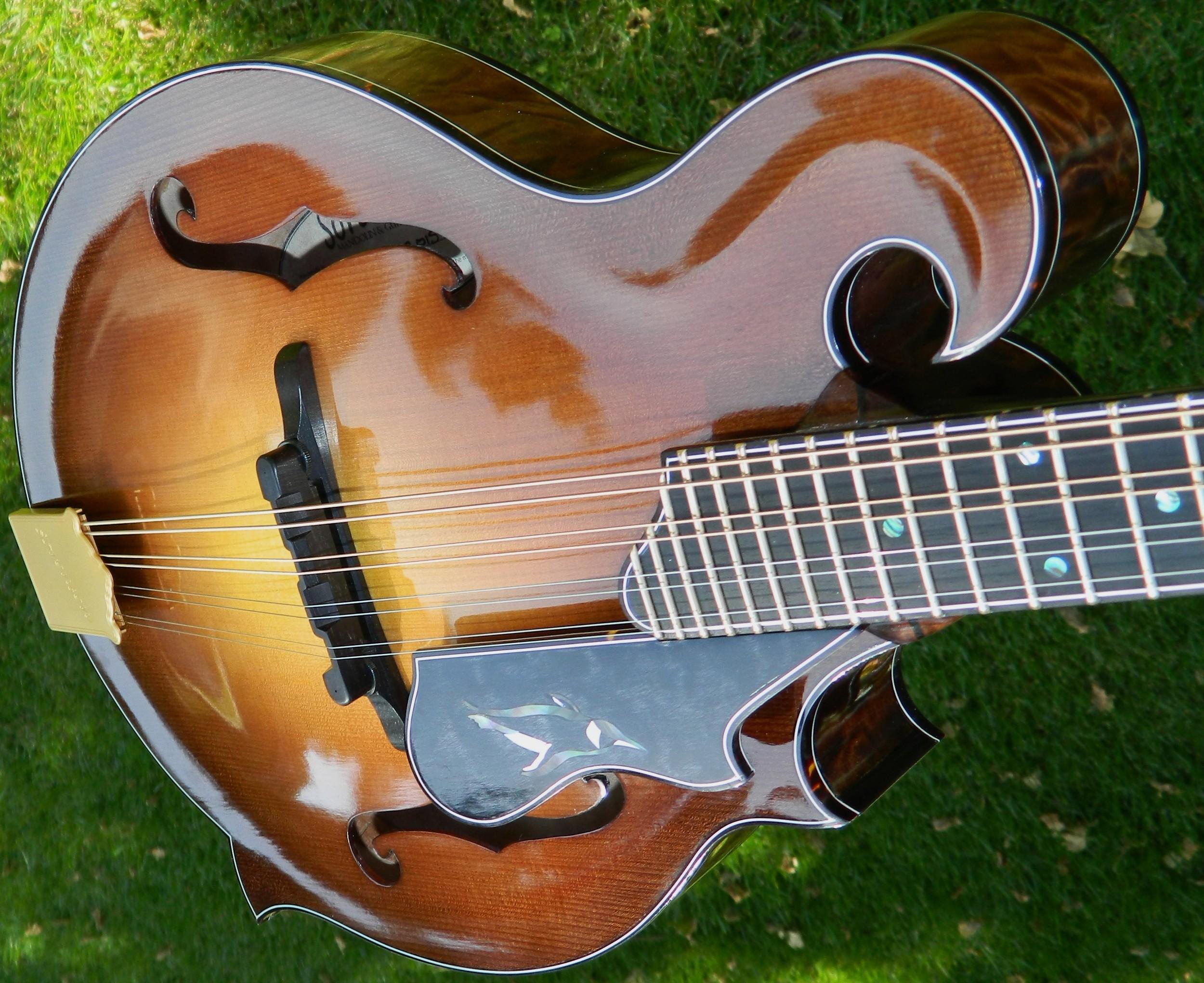 Pacifica mandolin, photo by Steve sorensen.