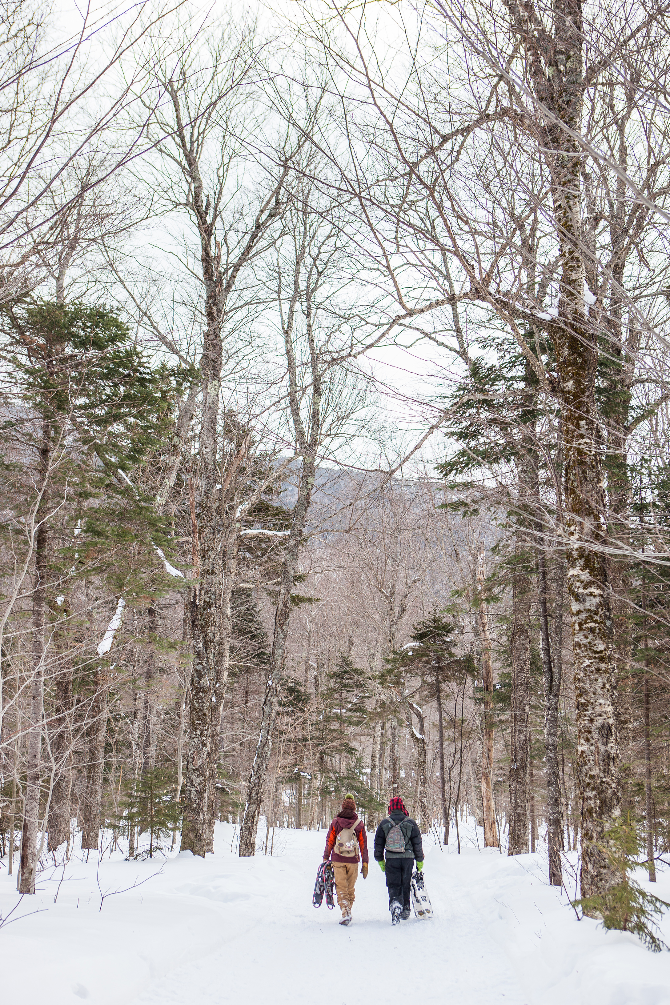 CindyGiovagnoli_Maine_Photographer_Winter_Mountains_Snow_Ski_Snowshoe-035.jpg