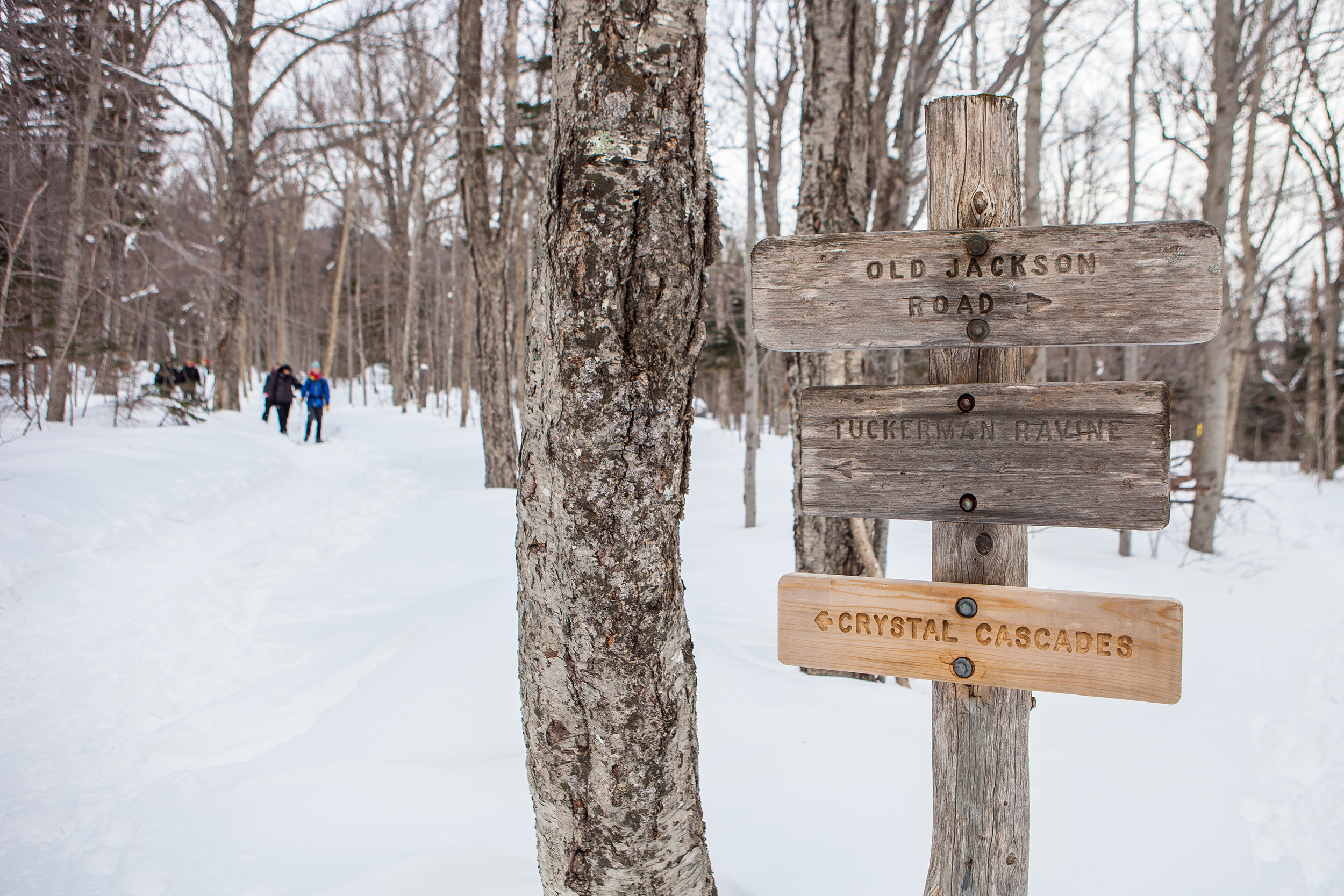 CindyGiovagnoli_Maine_Photographer_Winter_Mountains_Snow_Ski_Snowshoe-039.jpg